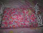 Criceto Brillito - Maschio ( (1 anno))